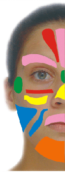 ansiktszonterapi